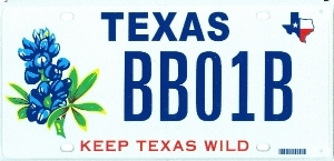 Parks and Wildlife Conservation Bluebonnet
