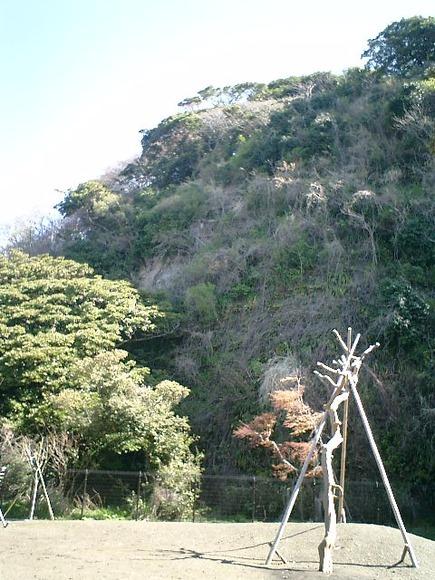 03)鎌倉市「材木座たぶの木公園」